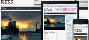 rees responsive web