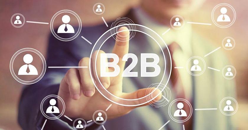 ¿Qué tipos de características tiene una tienda B2B?
