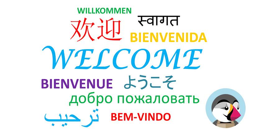 Cómo añadir un nuevo idioma en Prestashop 1.7