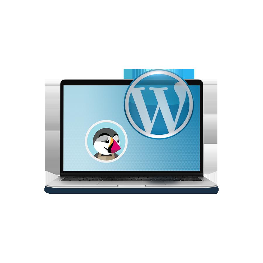 Module Wordpress connect Prestashop